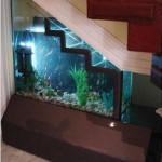 telek akvarium