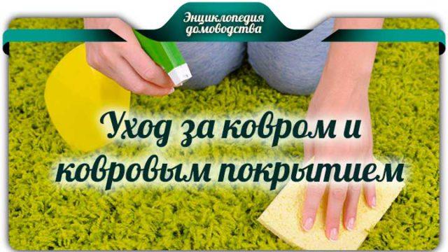 Уход за ковром и ковровым покрытием