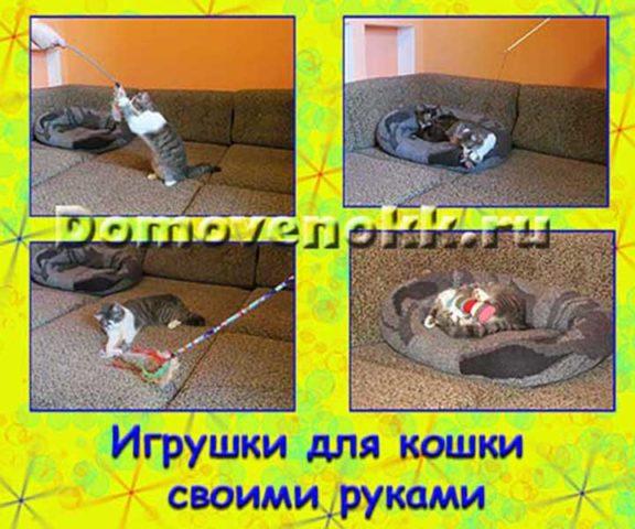 Игрушки и поделки для котят своими руками
