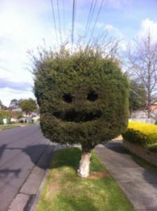 ужасное озеленение двора