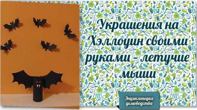 летучие мыши на хэллоуин
