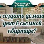 Как создать домашний уют в съемной квартире? 9 народных советов