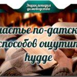 Счастье по-датски: 7 способов ощутить Hygge